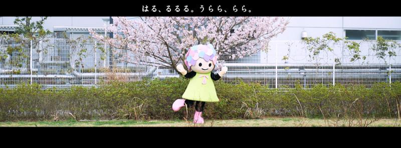 2015_04_さくら